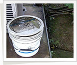 Eliminate Mosquito Sources - Pail