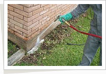 Pest Control Services - Trenching
