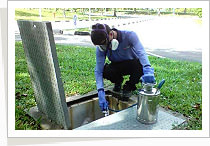 Pest Control Services - Residual Spraying