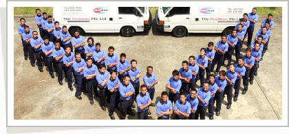 The Pestman Pte Ltd Company